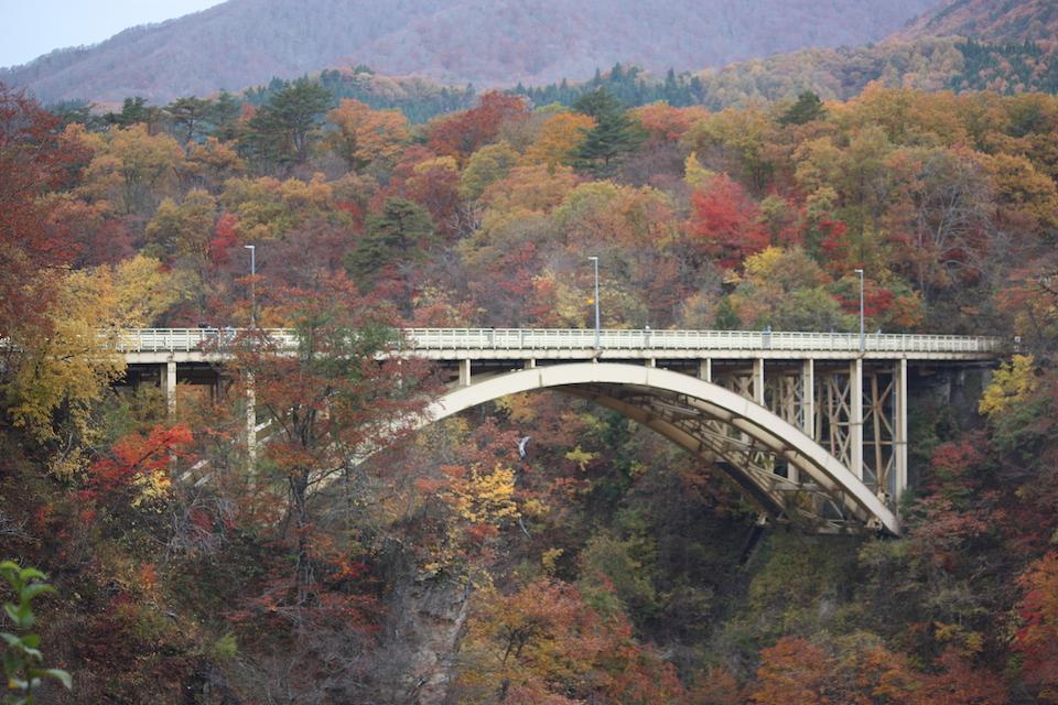 日本旅遊 日本東北 福島 岩手 宮城 鳴子峽 賞楓 紅葉