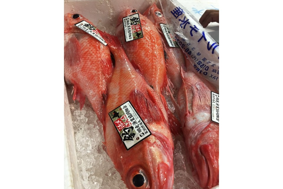 日本旅遊 北海道旅遊 日本美食 海鮮4