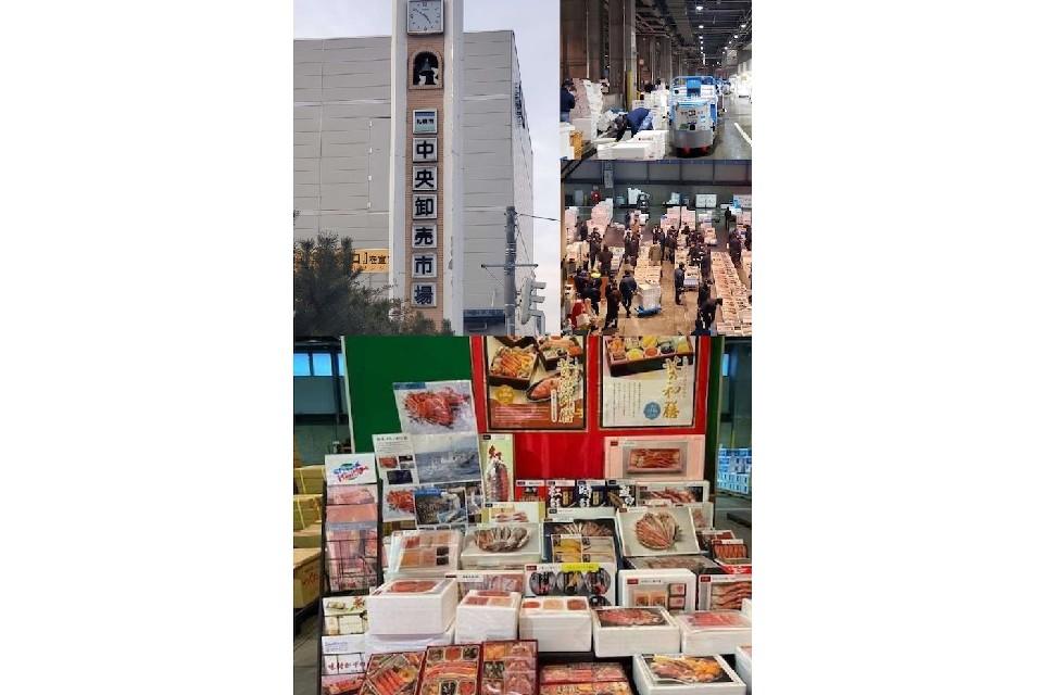 日本旅遊 北海道旅遊 日本美食 海鮮